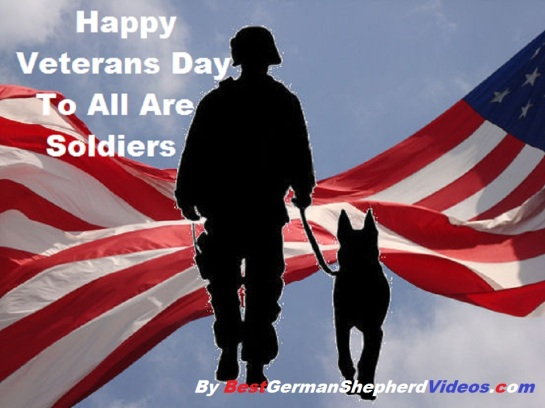 HAPPY VETERANS DAY TO ALL ARE SOLDIERS WE SALUTE YOU